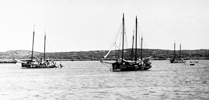 Parkes and Co. luggers in the Montebello Islands in 1913